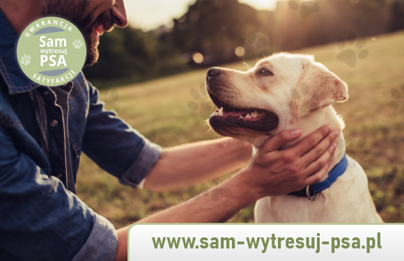Jak zrozumieć psa?